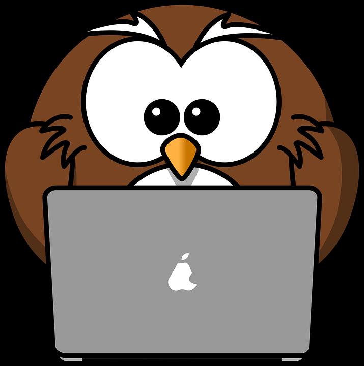 développement web PHP CSS JS création site web